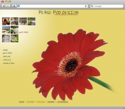 Pease Pod Design Website