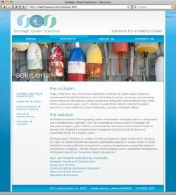 Strategic Ocean Solutions - Solutions
