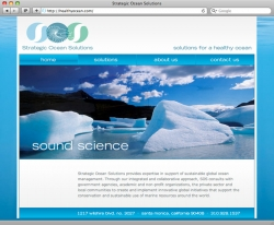 Strategic Ocean Solutions - Home