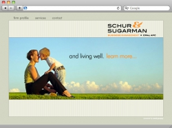 Schur and Sugarman Website