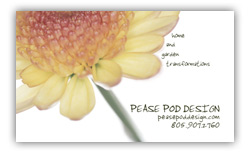 Pease Pod Business Card