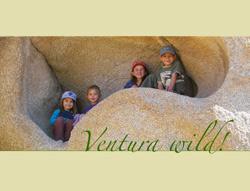 Ventura Wild