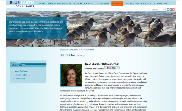 Blue Earth Consultants Website - About